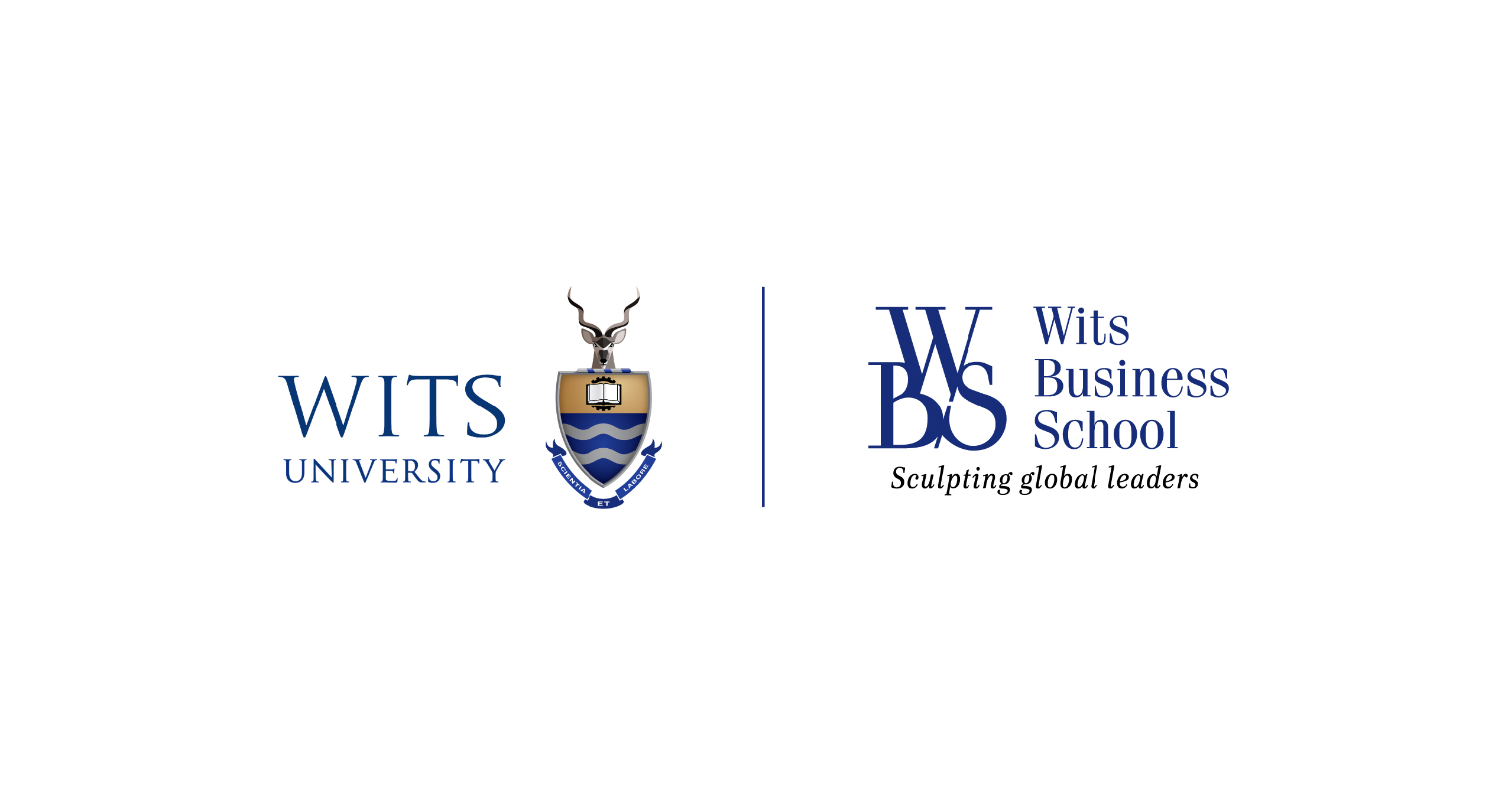 Wits Business School WBS logo