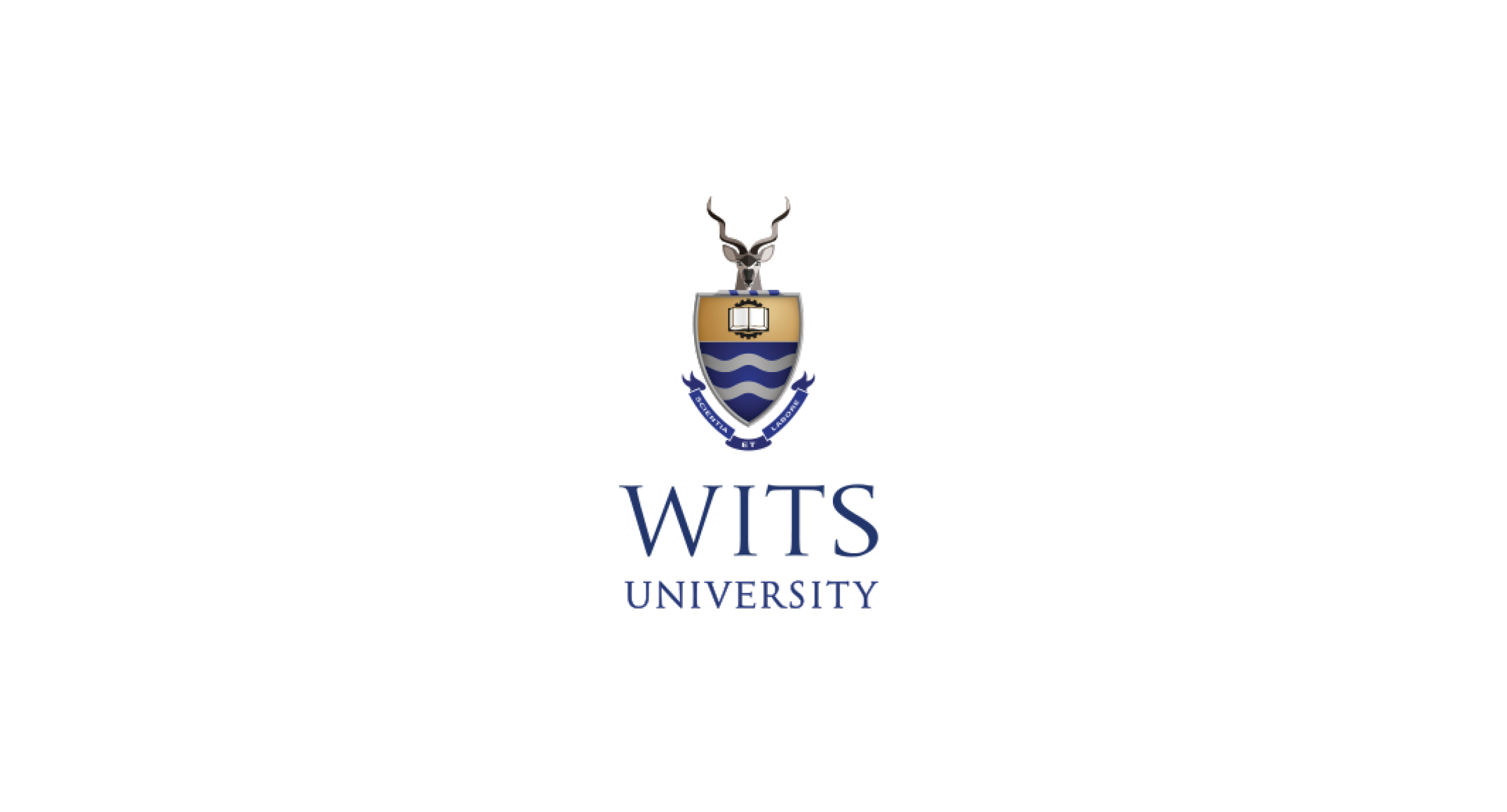 University of the Witwatersand Wits logo
